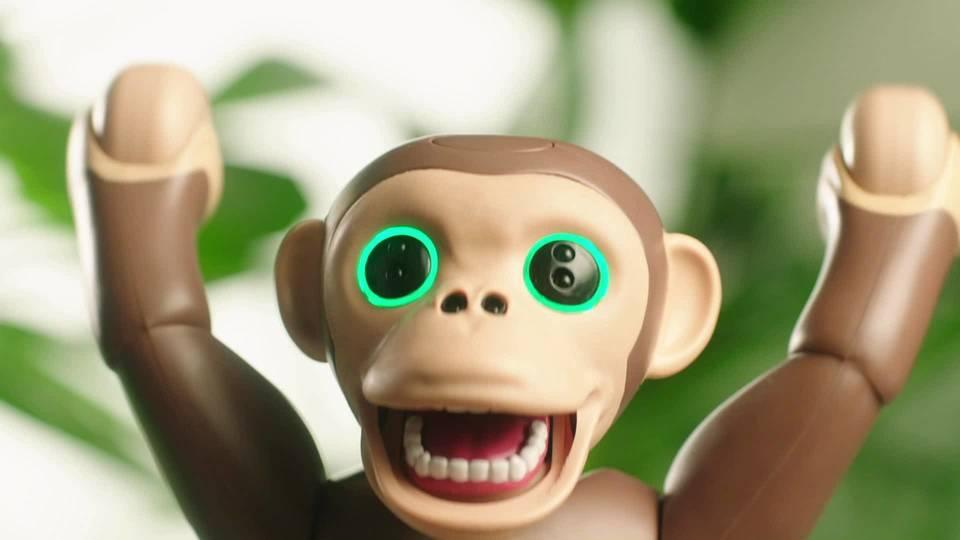 zoomer-chimp-robot