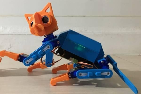 opencat