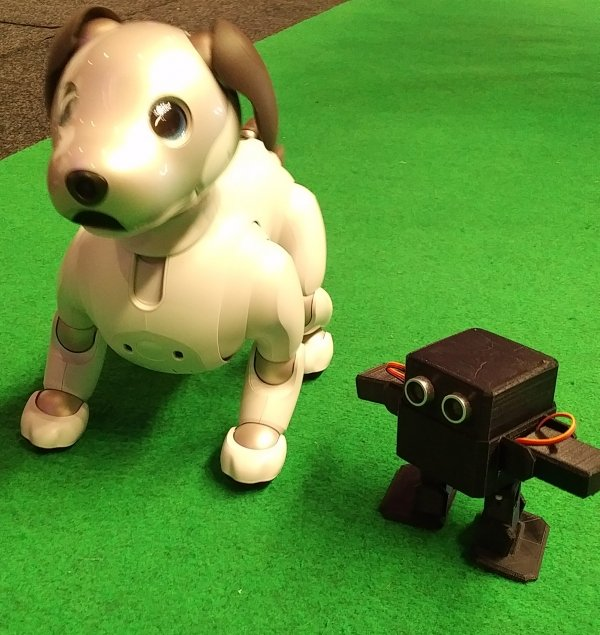 ottodiy aibo malta robotic mro