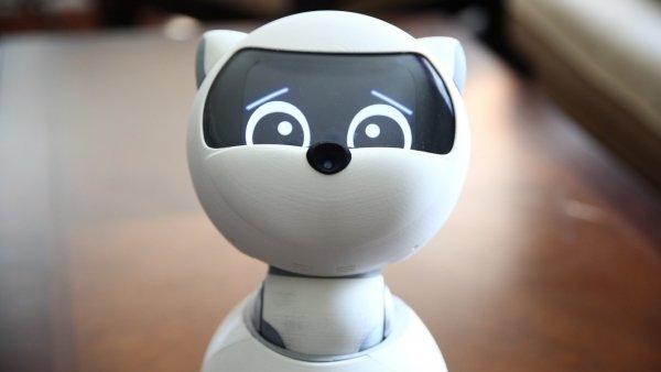 robot-toplist-june-2019