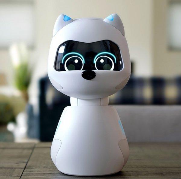 kiki-social-robot-robotic-pet