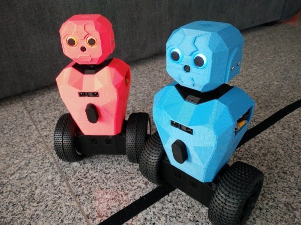 RS5 raspberry pi robot