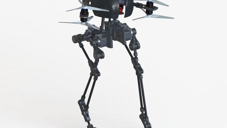 leonardo-flying-robot
