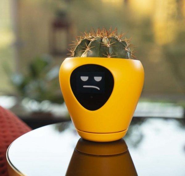 lua-smart-planter