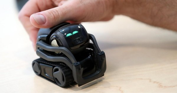 anki-acquisition-by-digital-dream-labs