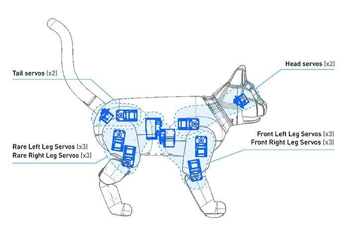 open-cat-marscat