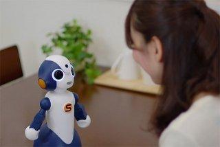 sota-social-robot