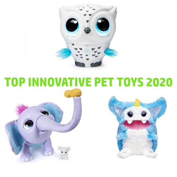 top-innovative-pet-toy-juno-owleez-rizmo-amazon-2020