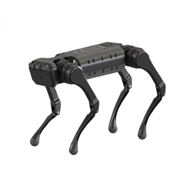 Unitree-A1-quadruped-robot-fighing