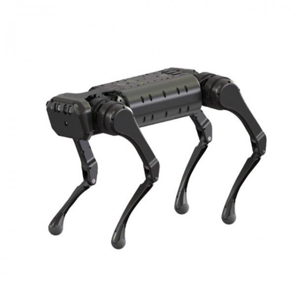 Unitree-A1-quadruped-robot-fighing