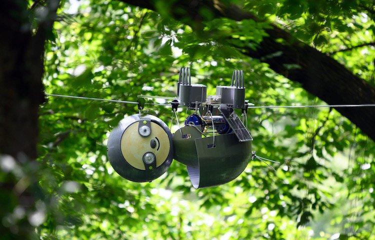 cute-robot-slothbot-sloth