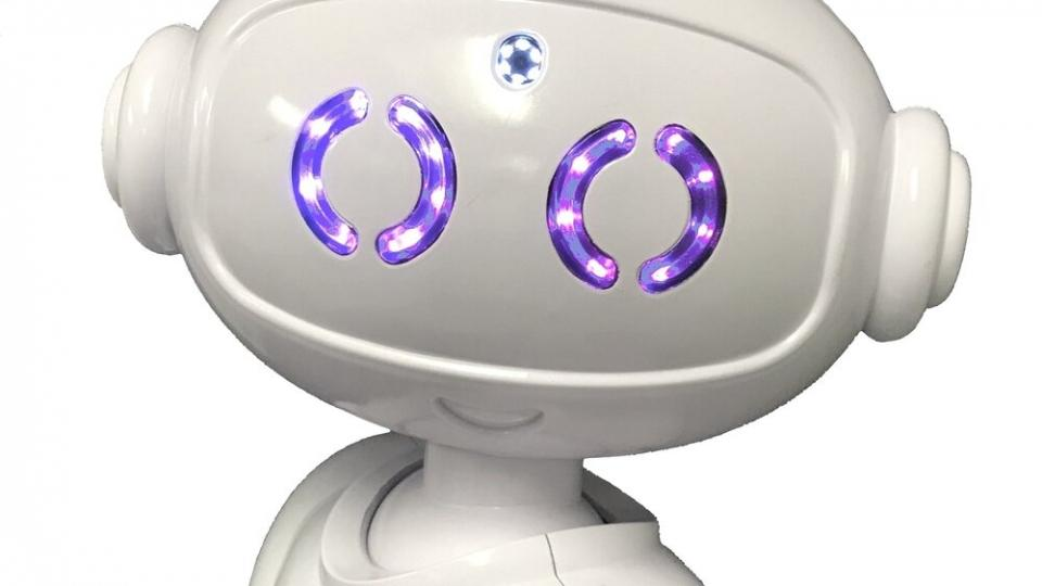abii-teacher-robot