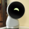"Jibo social robot ""reborn"" and is coming back!"