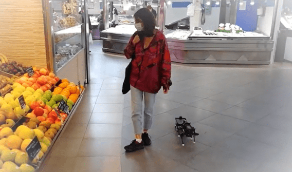 chop-robot-walks-with-you