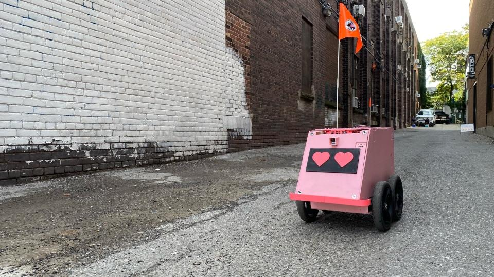 wobbly-pink-delivery-robot