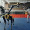 "Happy new Year & ""Do you Love me?"" from Boston Dynamics"
